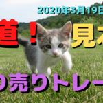 【FX】王道!戻り売りトレード【デイトレ】2020年3月19日木☆欧州時間☆ユーロドル☆トレード