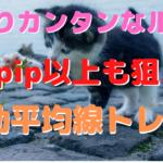 【FX】100pips以上も狙えるカンタンルール【デイトレ】